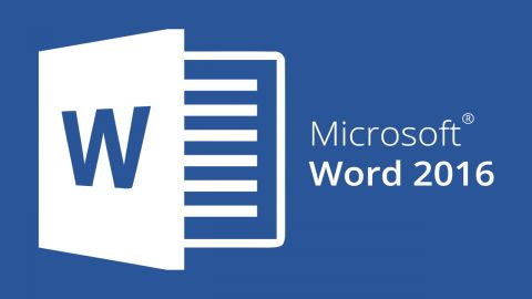Essential Online Course - Microsoft Word 2016